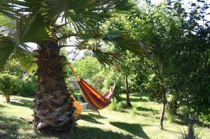Outdoor facilities at Zororo Retreat - Relax in a Hammock